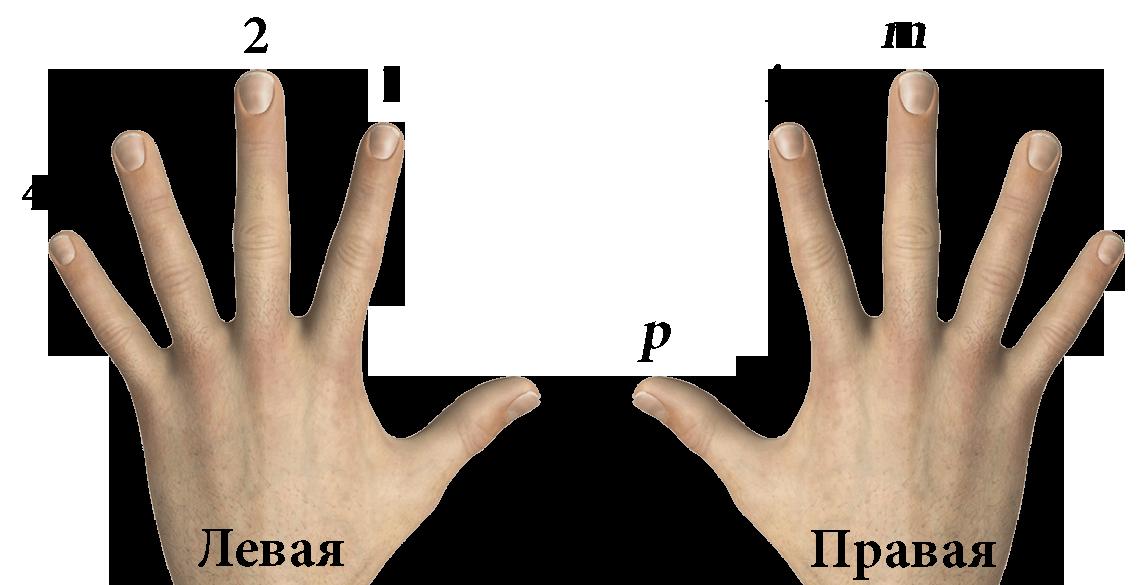 Путать лево-право